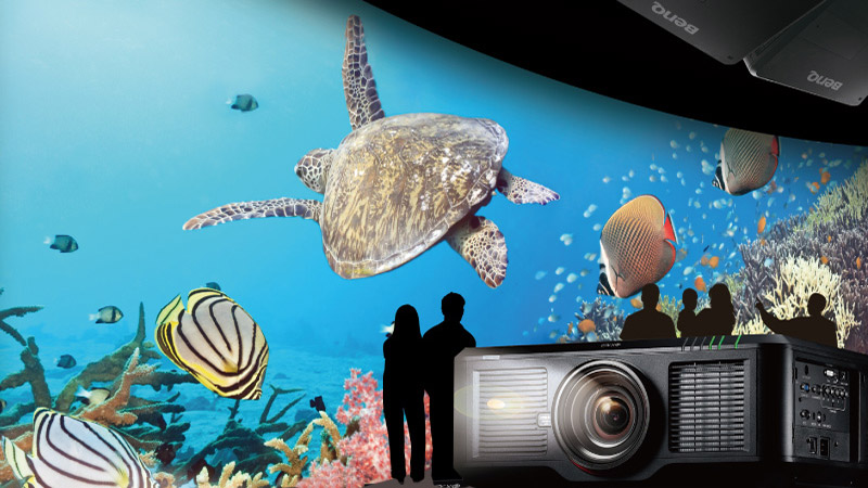 Turtles swimming on a wall projected by a large BenQ venue projector