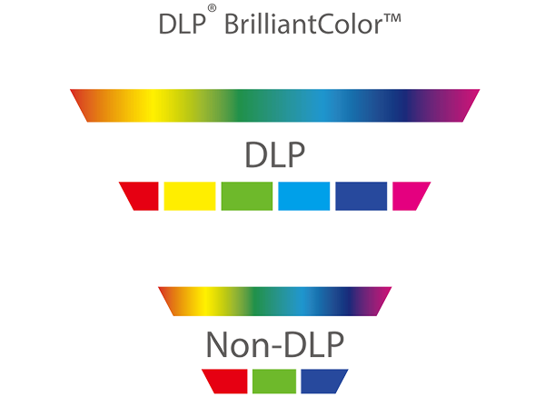 Cores-do-DLP