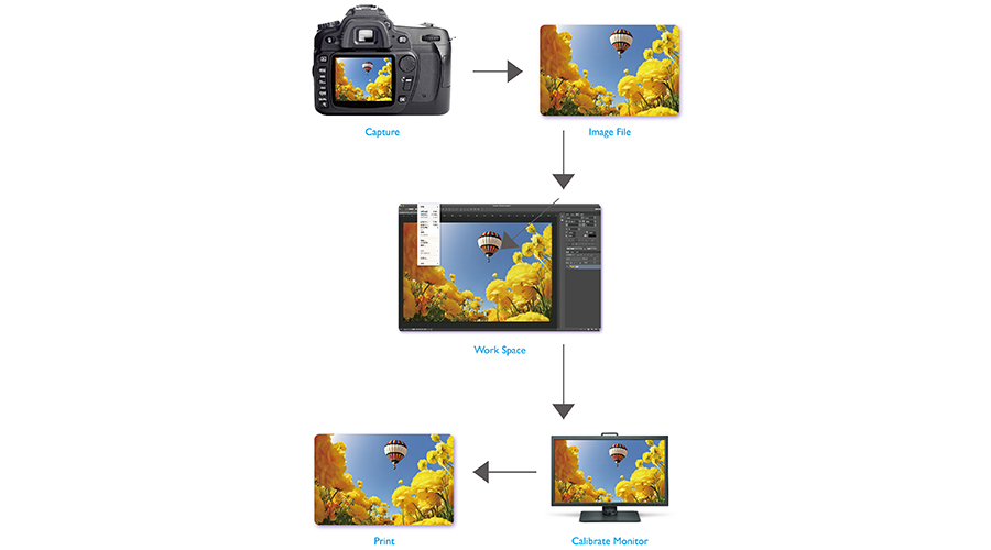 The real-world color management workflow shows the how a printed photo is produced from being taken, inputted in the computer software and processed by the calibrated monitor before the picture is outputted