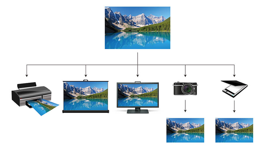 When implementing color management, we can expect a similar appearance of an image across different devices such as scanner, camera, monitor, projector and printer and media